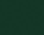 Зелёный лес U606