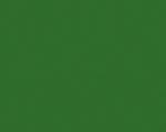 Папоротник зелёный U650