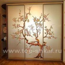 Шкаф-купе Сакура от Интерком-мебель