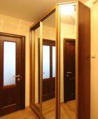 Встроенный шкаф-купе с зеркалом сатинат